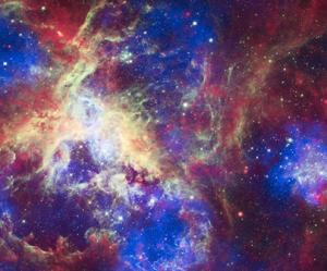 Tarantula-nebula